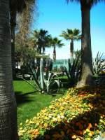 pflanzen-blumen/12230/park-vor-einem-hotel Park vor einem Hotel